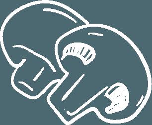 Champignons Zeichnung weiß