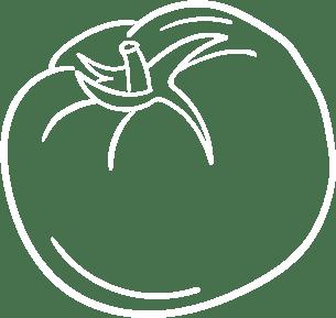 Tomate Zeichnung weiß
